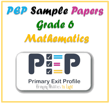 PEP Grade 6 Mathematics Sample Paper